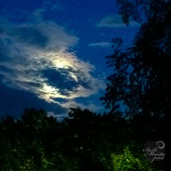 moon, full moon, clouds, night, sky