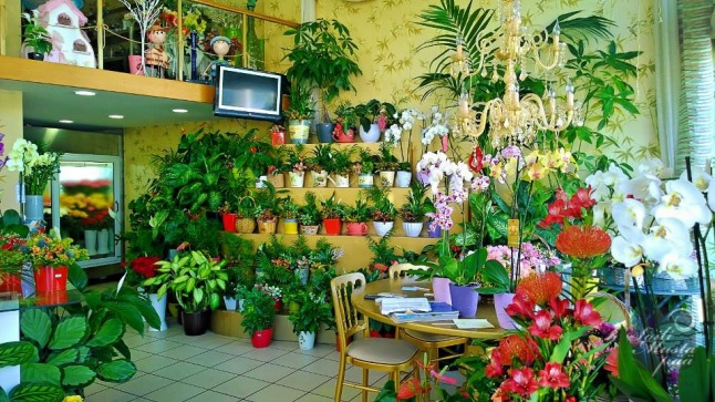 Flower Shop, Lefkada, Greece. Photo SOili Mustapää
