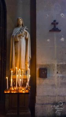 saintpaul_paris_photo_soilimustapaa_2015-3